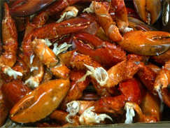 Lobster | Atlantic Treasure Limited